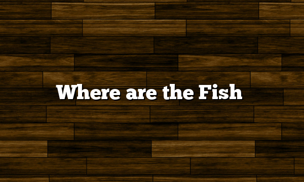 Where are the Fish